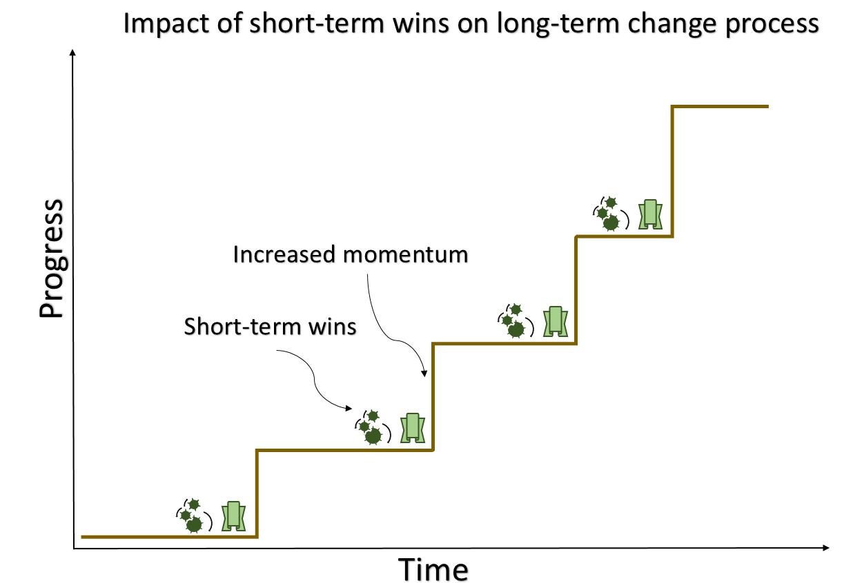 Short Term Wins : Working for a major change and worried about momentum